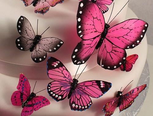 torta sa leptirićima