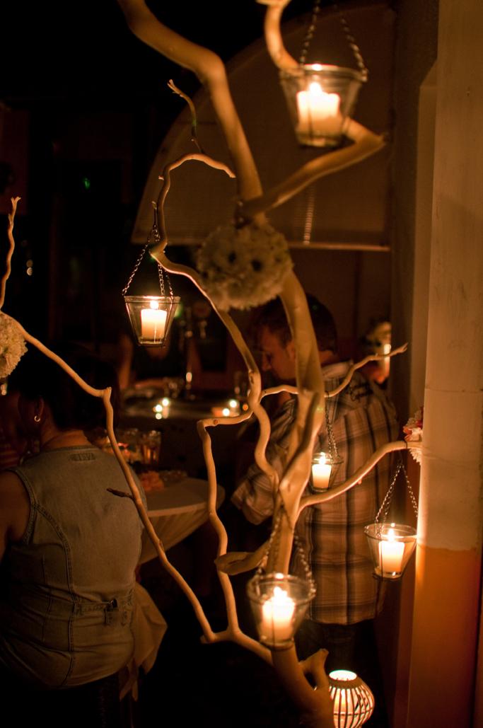 vrbina grana sa lampionima