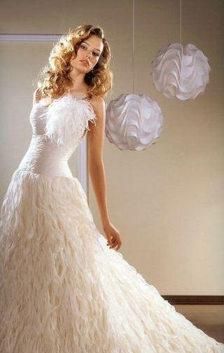 venčanica sa detaljima od perja