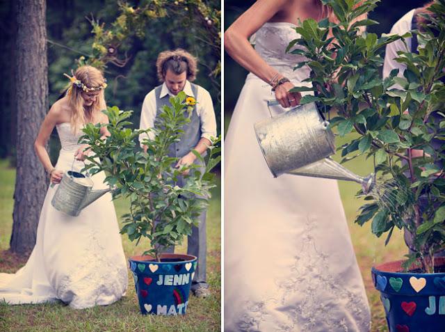 sadnja drveta na dan venčanja