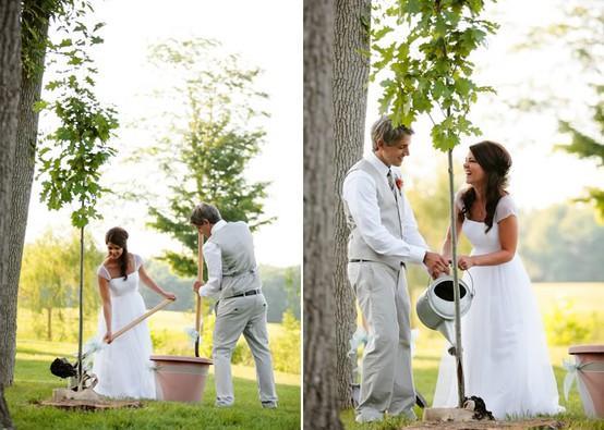 mladenci sade drvo na dan venčanja
