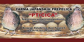 """Farma japanskih prepelica """"Ptičica"""""""